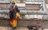Alter Sadhu und alter Hund.